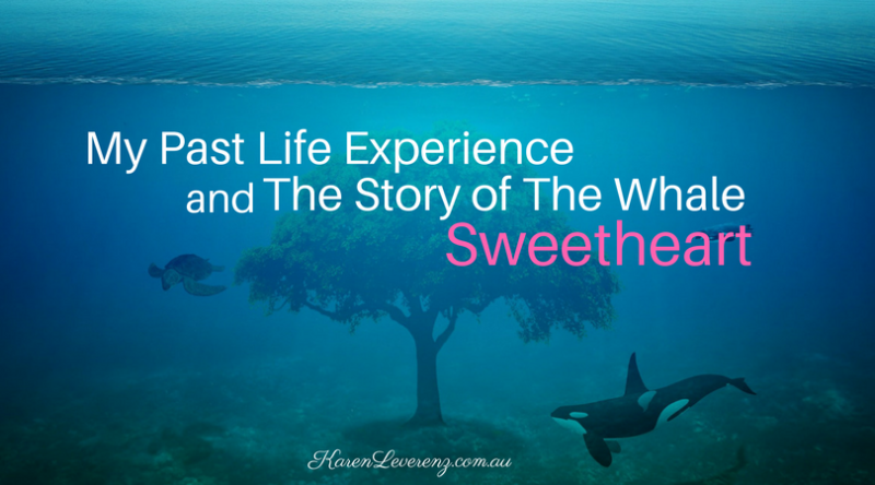Story of Whale Sweetheart