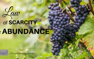 Law of Scarcity or Abundance